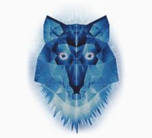 Ice Wolf Kids Clothes