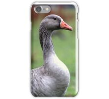 The Goose iPhone Case/Skin