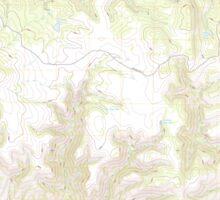 USGS TOPO Map Arizona AZ Willow Mountain SE 20111031 TM Sticker
