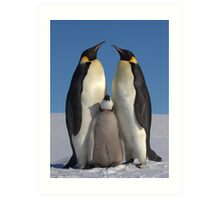 Emperor Penguins and Chick - Snow Hill Island Art Print
