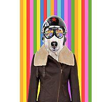 best dog work like aviator Photographic Print