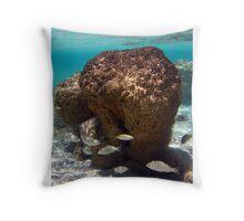 """Stromatolites in Hamelin Pool"" Shark Bay, Western Australia Throw Pillow"