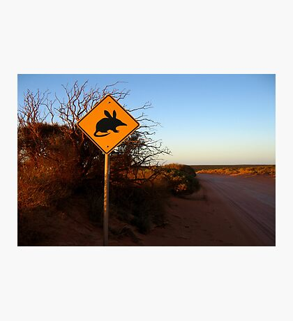 """Bilbies Crossing"" Francois Peron National Park, Western Australia Photographic Print"