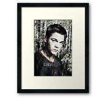 IV Framed Print