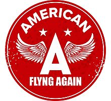 american flyng again Photographic Print