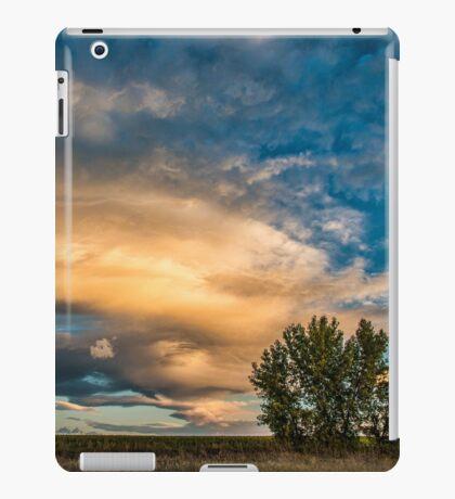 Light Storm On The Plains iPad Case/Skin