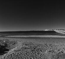 Duxbury Beach Infrared by Troy Dodds