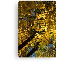 Golden Canopy - Look Up to the Trees and Enjoy Autumn - Vertical Left Canvas Print