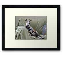 A Kiss from Charlie Framed Print