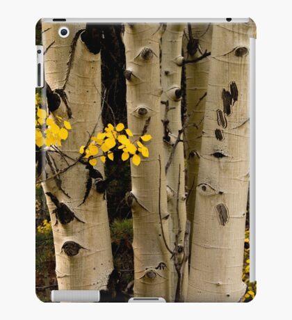 Fall Jewels iPad Case/Skin