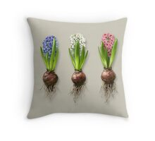 Hyacinthus orientalis in three shades Throw Pillow