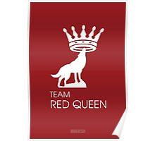 Team Red Queen (Ruby & Regina - OUAT) Poster