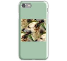GERMAN SHEPHERDS iPhone Case/Skin