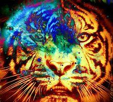 Tiger_8507 by AnkhaDesh