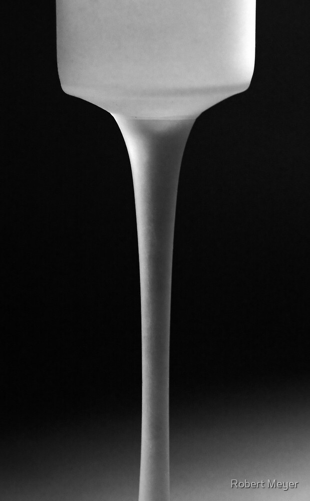 Two Bottles•Pouring Milk by Robert Meyer