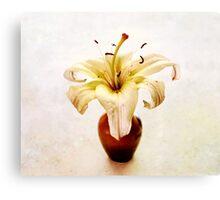 Golden Yellow Lily Still Life Canvas Print