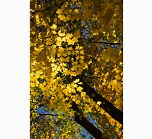 Golden Canopy - Look Up to the Trees and Enjoy Autumn - Vertical Right Unisex T-Shirt
