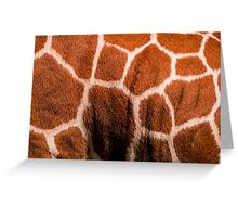Earth Tone Puzzles Greeting Card