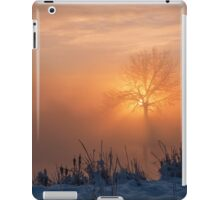 A Moment With Spirit iPad Case/Skin