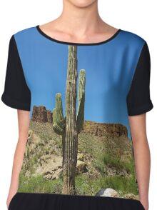 Desert landscape, Arizona Chiffon Top