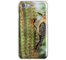 Bird on Cactus iPhone Case/Skin
