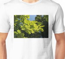 More Than Fifty Shades Of Green - Sunlit Oak and Linden Patterns - Up Right Unisex T-Shirt