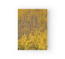 Aspen Golden Harp Hardcover Journal