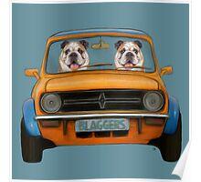 Bulldogs in A Mini  Poster
