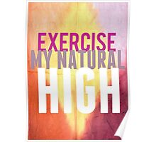 Exercise Is My Natural High Poster