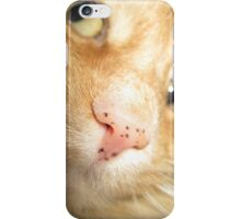 Fuzzball Up Close iPhone Case/Skin