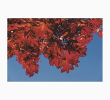 More Than Fifty Shades Of Red - Glossy, Leathery Oak Leaves in the Sunshine - Downward Kids Tee
