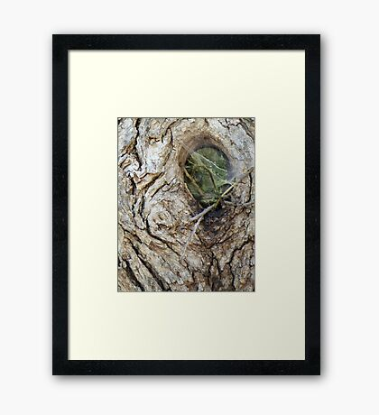 They Live Among US Framed Print