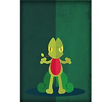 Pokemon - Treecko #252 Photographic Print