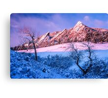 The Flatirons In Winter Blues And Pink Canvas Print