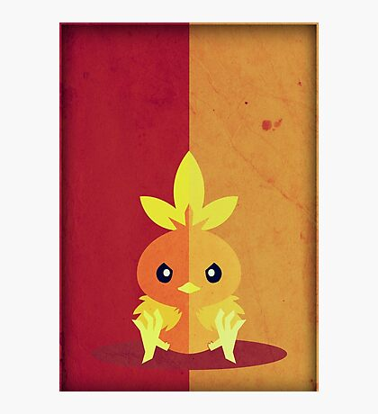 Pokemon - Torchic #255 Photographic Print