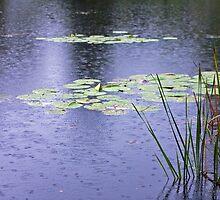 Fishing in the Rain by Adam Bykowski
