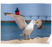 Flapping Gull And Lighthouse Poster