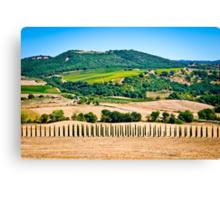 Tuscany landscape 1. Canvas Print