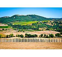 Tuscany landscape 1. Photographic Print