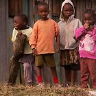 On the Mulot to Narok Town road, Kenya by indiafrank