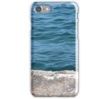 Lake Michigan  iPhone Case/Skin