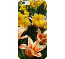 Tulips and Daffs iPhone Case/Skin