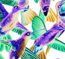 Hummingbird Dance in Sharpie (Inversion Edition) Sticker