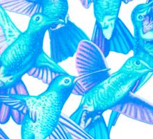 Hummingbird Dance in Sharpie (IceBird Edition) Sticker