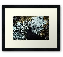 The Nap from a View Framed Print