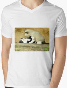 Kitten Play Mens V-Neck T-Shirt