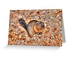 Marmot Munchies Greeting Card