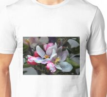 Lox's Orange Pippin Apple Blossom Flowers Unisex T-Shirt