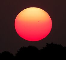 Spot on the sun... up close by Owed to Nature