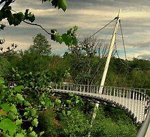 Liberty Bridge by Picture-It
